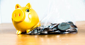 Coin and piggy bank. Coin in plastic bag with piggy bank on side Stock Images