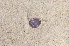 Coin in sand. Stock Images