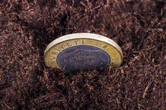 Coin in Soil Stock Photos