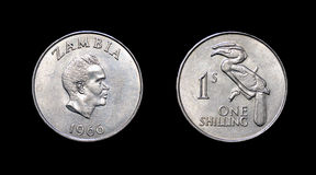 Coin of Zambia - XX century Royalty Free Stock Photo