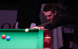 Coincez le champion du monde, tournoi amical de jeux de Mark Selby à Bucarest Photo libre de droits