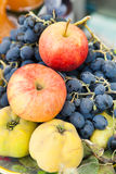 Coing avec des pommes et des raisins Image libre de droits