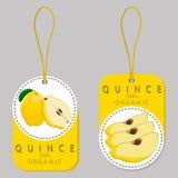 Coing jaune de fruit Images stock