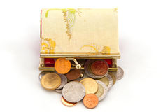 Coins in the bag Royalty Free Stock Photo