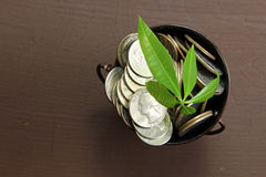 Coins in a bucket Stock Image