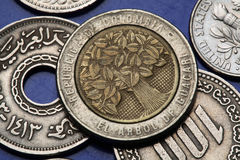 Coins of Colombia Stock Photos