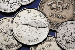 Coins of Croatia Stock Images