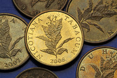 Coins of Croatia Royalty Free Stock Images
