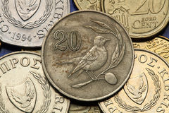 Coins of Cyprus Stock Photos