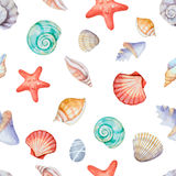 Coins d'aquarelle du cadre avec des coquilles de mer Photos stock