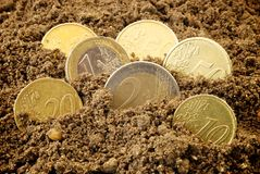 Coins in dirt concept Royalty Free Stock Images