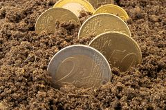 Coins in dirt concept Royalty Free Stock Photo