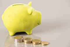 Coins Economy. With money box pig Stock Photography