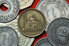 Coins of Egypt Stock Image