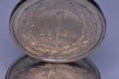 Coins EUR and PLN Stock Photos