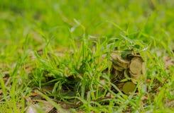 coins exponeringsglas Royaltyfria Bilder