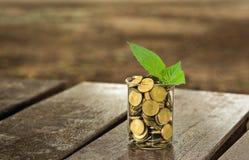 coins exponeringsglas Royaltyfri Foto