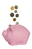 Coins falling into a pink pig Stock Image
