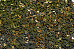 Coins in fountain water Royalty Free Stock Photo