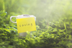 Coins in glass money mug with saving label, blurred grass view a Stock Photo
