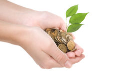 Coins in hands Stock Image