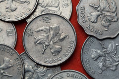 Coins of Hong Kong Stock Image