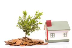 Coins, house and plant stock photography