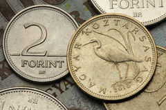 Coins of Hungary Stock Photography