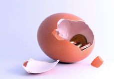 Coins inside cracking hatched egg, symbol for investment, bankin Royalty Free Stock Photo