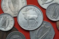 Coins of Ireland. Red deer (Cervus elaphus). Depicted in the Irish one pound coin royalty free stock image