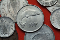 Coins of Ireland. Salmon. Depicted in the Irish 10 pence coin Royalty Free Stock Photography