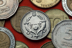Coins of Israel. Two cornucopia Royalty Free Stock Photo
