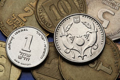 Coins of Israel Stock Photography