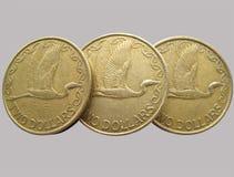 Coins kiwi Stock Image