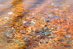 Coins laying in water fountain Stock Photo