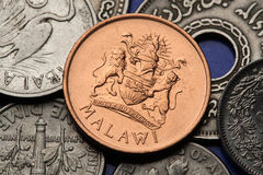 Coins of Malawi Stock Images