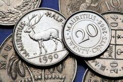 coins mauritius Royaltyfri Fotografi