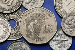 Coins of Mauritius. Mauritian peasant cutting sugar cane in a field depicted in the Mauritian ten rupee coin Stock Image