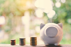 Coins and piggy bank Royalty Free Stock Images