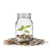 Coins in piggy bank Glass Stock Photo