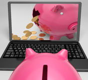 Coins Piggy Laptop Shows Banking Financial Success Stock Image