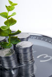Coins with plant and clock, isolated on white background. Stock Photos