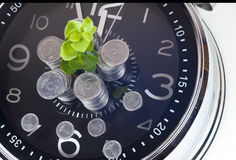 Coins with plant and clock, isolated on white background. Stock Photo