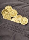 Coins in pocket. Gold coins in jacket pocket Stock Images