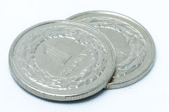 Coins. Polish currency on white background Stock Image