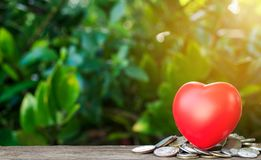 Coins and red heart Royalty Free Stock Photos