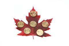 coins and red maple leaf Stock Image