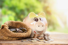 Coins in sack and piggy bank for money saving financial royalty free stock photography