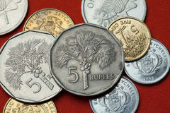 Coins of the Seychelles. Coconut palm (Cocos nucifera). Depicted in the Seychellois five rupee coin Royalty Free Stock Images
