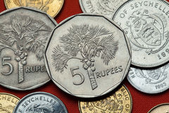 Coins of the Seychelles. Coconut palm (Cocos nucifera). Depicted in the Seychellois five rupee coin Stock Photo